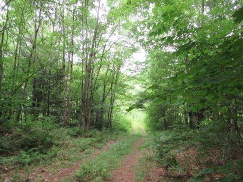 13 Acres Hunting Parish Ny Fishing : Parish : Oswego County : New York