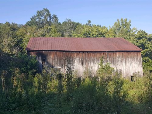 Bear Creek Rd - 8 Acres : Felicity : Clermont County : Ohio