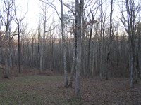 Mountain Views, Owner Financed : Dunlap : Sequatchie County : Tennessee