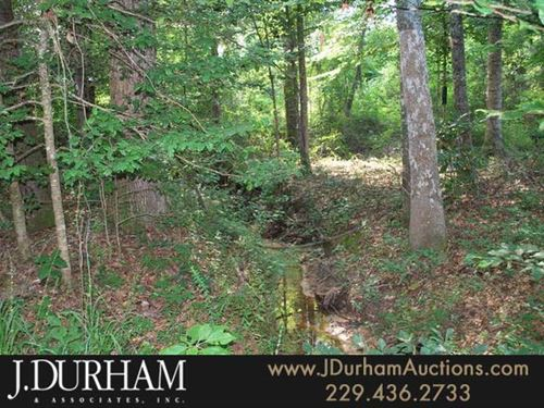 236 Acres Of Woods & Hunting Land : Georgetown : Quitman County : Georgia