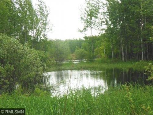 Minnesota Hunting Land : Saginaw : Saint Louis County : Minnesota