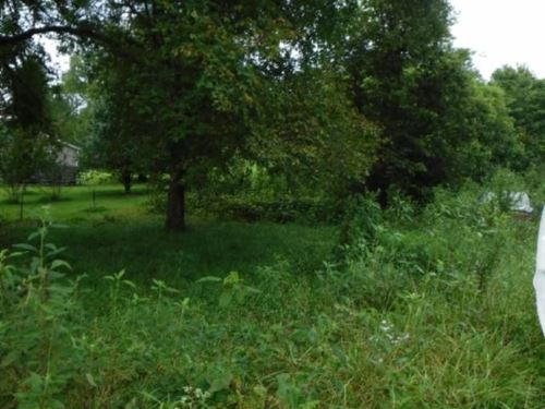 8.33Ac, Creek, Mtn Views, Wildlife : Pleasant Shade : Smith County : Tennessee