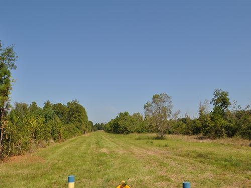 1851 Acres Fm 787 : Rye : Liberty County : Texas