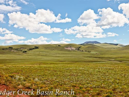 Badger Creek Basin Ranch : Hartsel : Park County : Colorado
