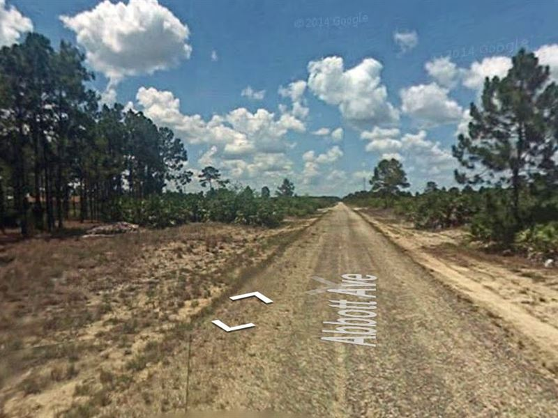 .33 Acres In Lehigh Acres, FL : Lehigh Acres : Lee County : Florida