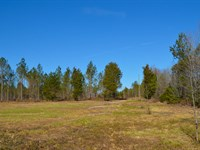 Wooded & Open Farm Sites 6-11 Acres : Inman : Spartanburg County : South Carolina
