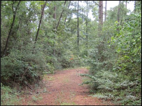 9 Acres In Pearl River County : Lumberton : Pearl River County : Mississippi