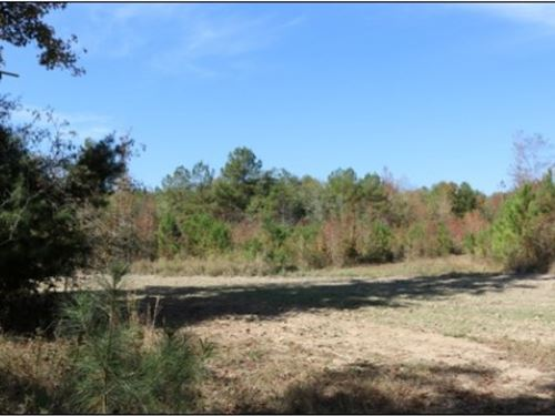 136 Acres In Lauderdale County In : Meridian : Lauderdale County : Mississippi