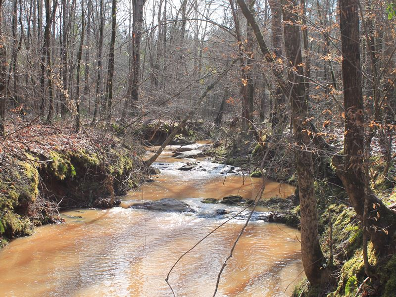 Reduced, The Reserve - Jones County : Round Oak : Jones County : Georgia