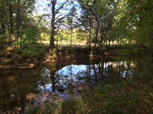 Beautiful Acreage With Creek : Shelbyville : Bedford County : Tennessee