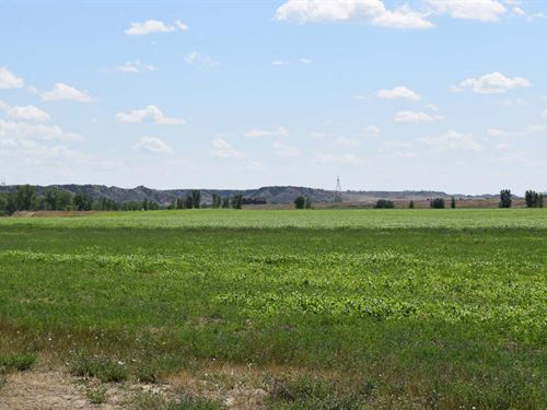 Deer Creek Irrigated Farm : Glendive : Dawson County : Montana