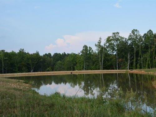 Something Special : Farmville : Prince Edward County : Virginia