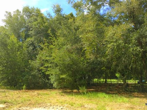 Meadowbrook Ranches - 10E - 0.80Ac : Anthony : Marion County : Florida