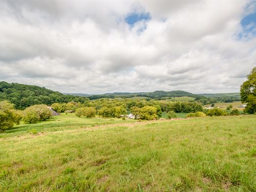 125 Acre Middle Tn Farm : Hampshire : Maury County : Tennessee