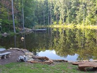 Beautiful 60 Acres With Pond : Gladys : Campbell County : Virginia