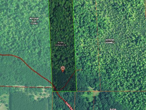 10 Acres In Mason County Michigan : Branch : Mason County : Michigan