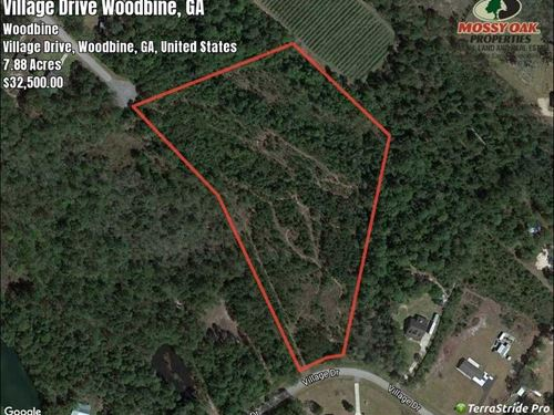 78 acres land for sale in camden woodbine camden county georgia