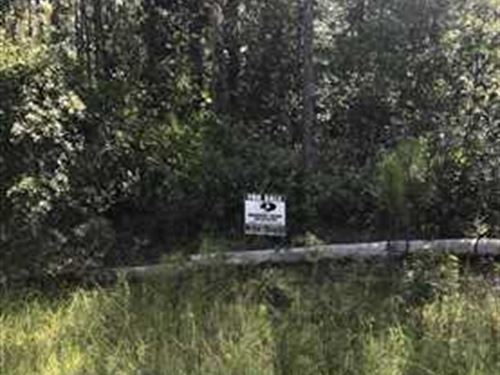 2.5+/- Acres - Sale Near Kingsland : Kingsland : Camden County : Georgia