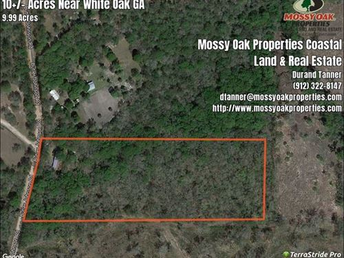 10+/- Acres With Mobile Home Camden : White Oak : Camden County : Georgia