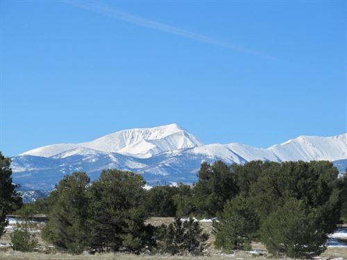 8841128 - Picture Windows : Salida : Chaffee County : Colorado