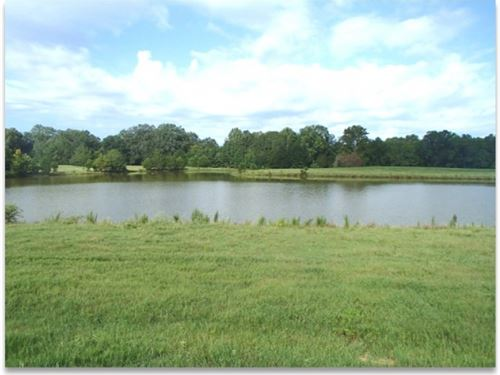 142.5 Acres In Oktibbeha County : Starkville : Oktibbeha County : Mississippi