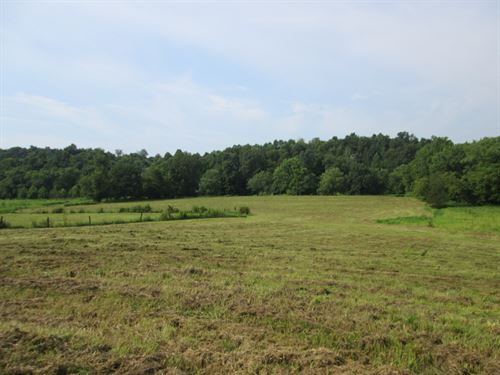 8 Acres River Frontage Green Co, Ky : Greensburg : Green County : Kentucky