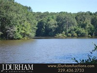 475 Beautiful Acres & Other Tracts : Buena Vista : Marion County : Georgia
