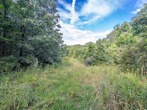 Brushy Hill Rd - 38 Acres : Beallsville : Belmont County : Ohio
