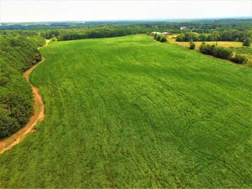 32 Acres Located On Hwy 110 : Cowpens : Spartanburg County : South Carolina