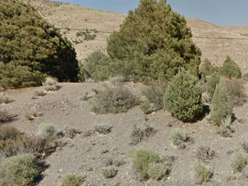 Douglas County, Nv $85,000 Neg : Willington : Douglas County : Nevada