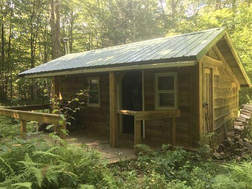 Camp Fisher Trail : Amboy : Oswego County : New York