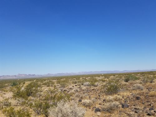 20 Plus Acres Of Desert Beauty : Golden Valley : Mohave County : Arizona