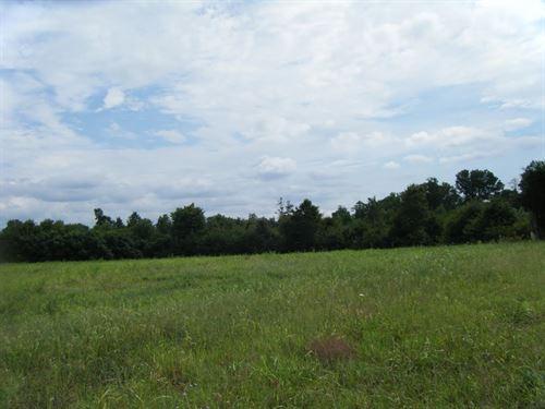 11.17 Acres In Long Island, Va : Long Island : Pittsylvania County : Virginia