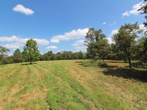 Woodie Rd - 177 Acres : Patriot : Gallia County : Ohio