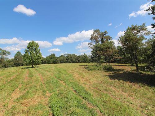 Woodie Rd - 177 Acres : Patriot : Gallia County : Ohio
