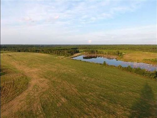 152 Acre Farm Land For Sale Applin : Baxley : Appling County : Georgia