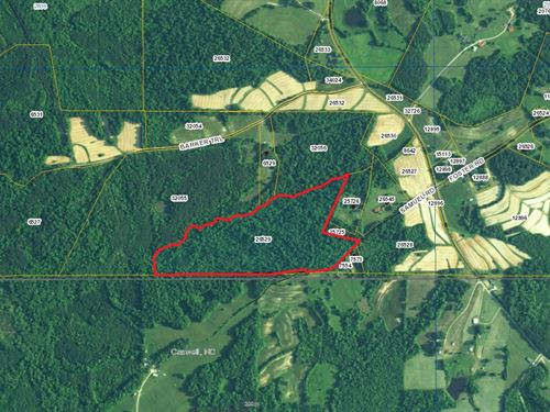 Great Building Sites Near Vir : Alton : Halifax County : Virginia