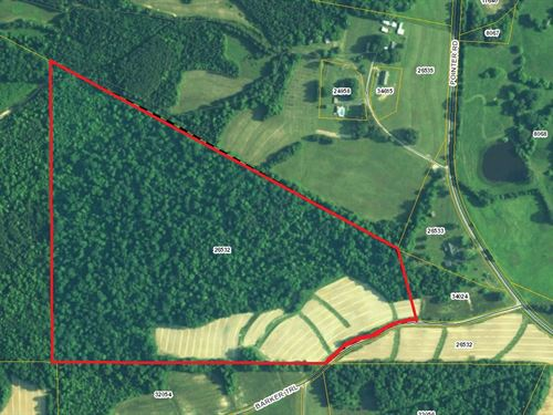 Great Recreational Hunting Tract : Alton : Halifax County : Virginia