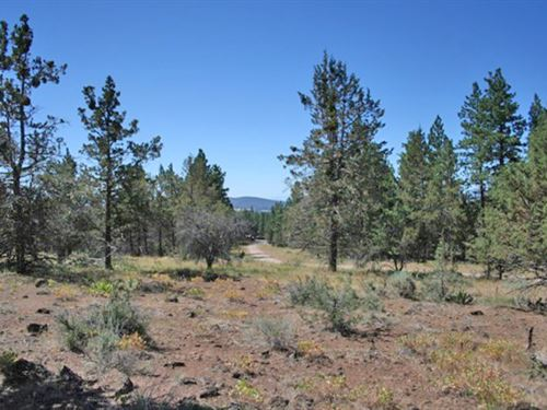 Yonna Woods Lot : Bonanza : Klamath County : Oregon