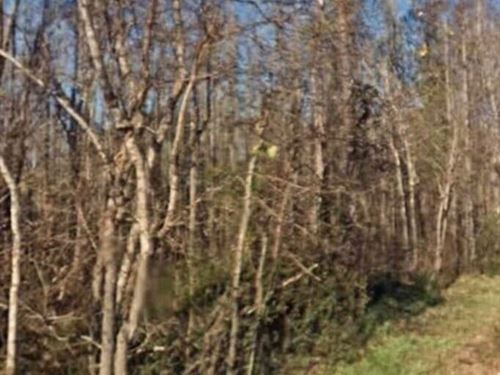 .59 Acres- Moss Point, Ms 39562 : Moss Point : Jackson County : Mississippi