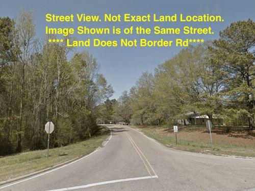 1.42 Acres- Tishomingo, Ms 38873 : Tishomingo : Mississippi