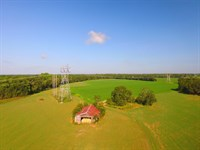 70 Acre Beautifully Aged Farm : Baxley : Appling County : Georgia