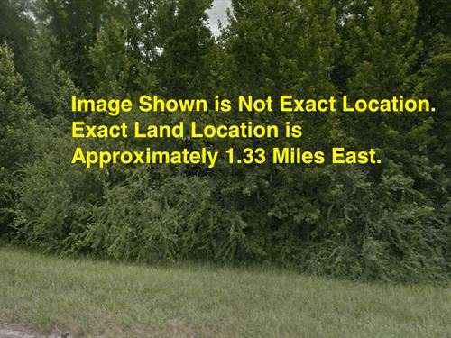 1.19 Acres- Lumberton, Ms 39455 : Lumberton : Pearl River County : Mississippi