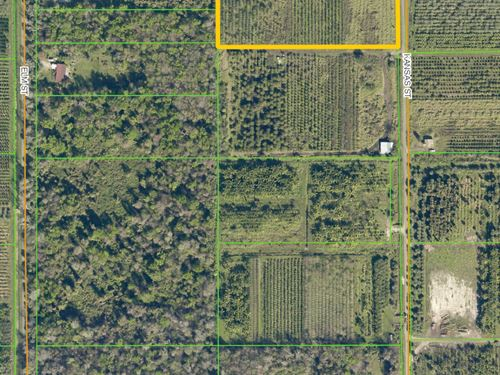 Florida Sheep Land for Sale : LANDFLIP