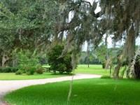 Pintail Plantation : Levy : Jasper County : South Carolina
