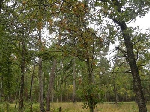 1.14 Acres- Hot Springs, Ar 71909 : Hot Springs Village : Garland County : Arkansas