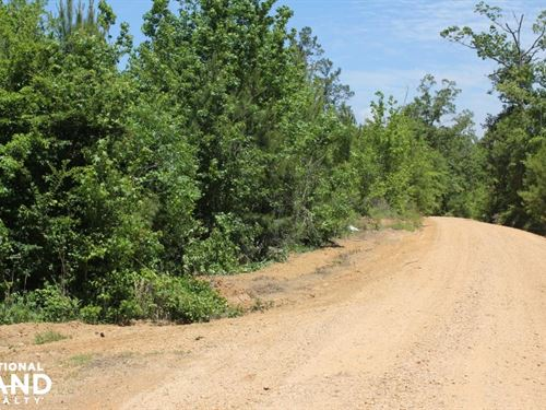 Shop Road Homesite : Sulligent : Lamar County : Alabama