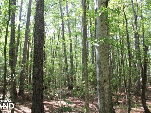 5 Acre Wooded Home Site : Moncks Corner : Berkeley County : South Carolina