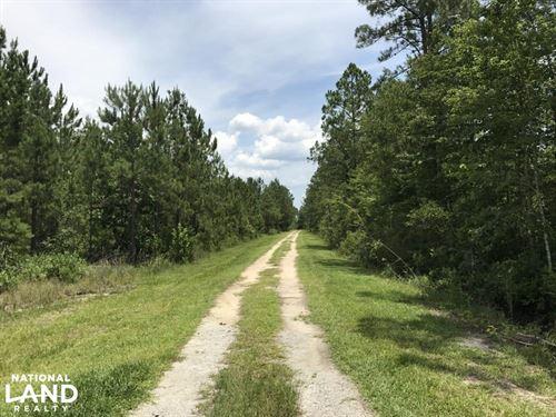 Hwy 68 Yemassee Development/Homesit : Early Branch : Hampton County : South Carolina
