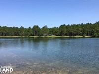 Jeff Hamilton Lake & Home Tract : Mobile : Mobile County : Alabama